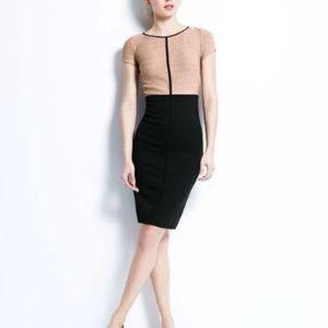 NWT Ann Taylor Colorblock Career Dress